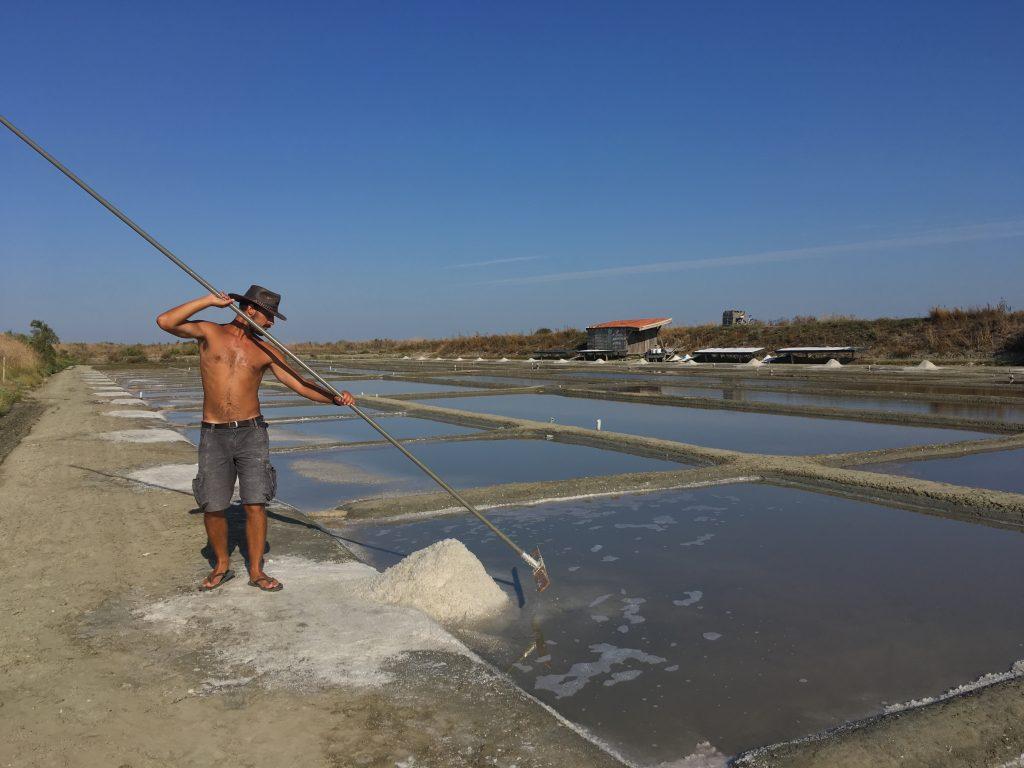 Récolte de la fleur de sel qui va servir de base à la fleur de sel aux algues de de l'île de Ré